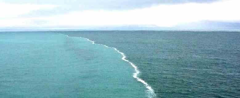 tuzlu ve tatli deniz suyu